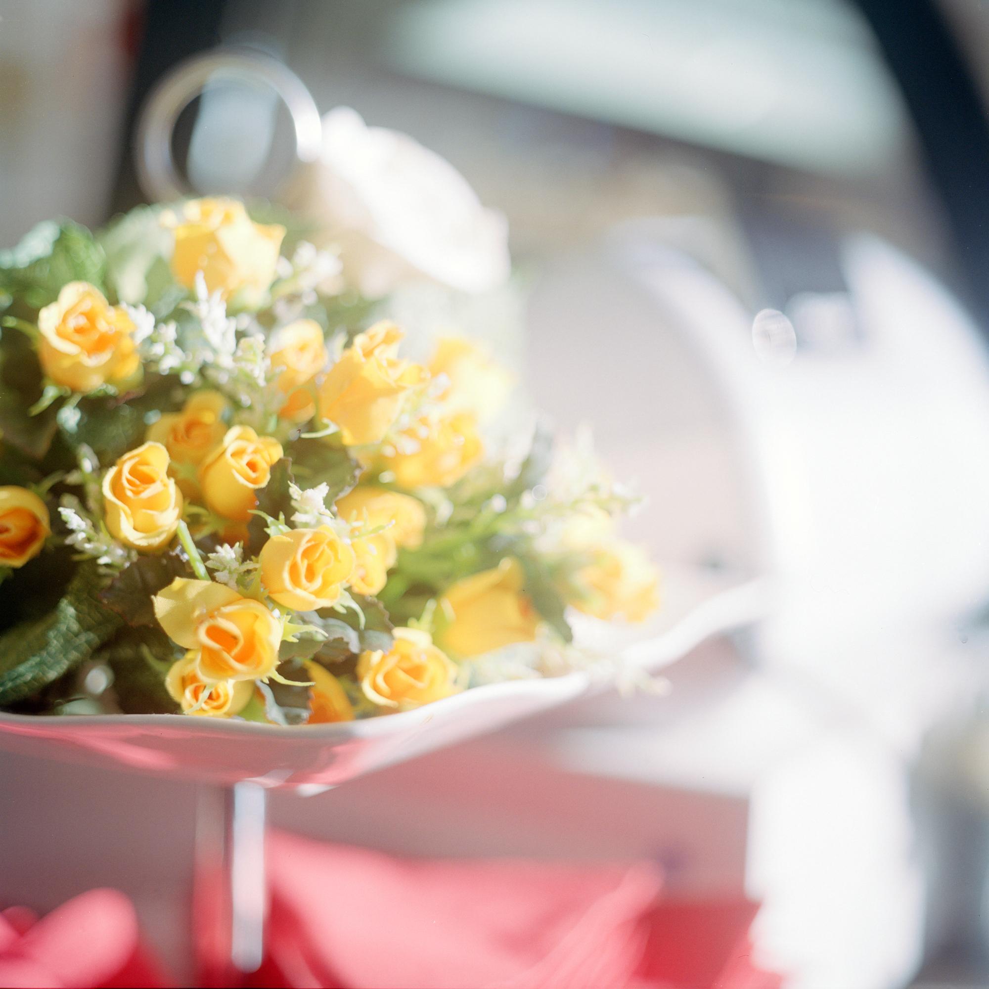 Fritz- Kistler Haus, Pasing. Blumen im Cafe Dir de Don in der Einrichtung Fritz- Kistler in der Schmaedelstrasse 29, Muenchen am 17. Januar 2011. Fotograf Evi Lemberger